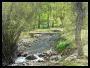 Pine Creek by Bullion Creekside Retreat near Marysvale Utah